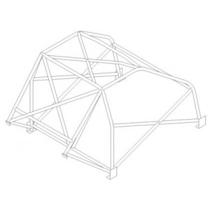 BMW E9 CSL roll cage (CDS)
